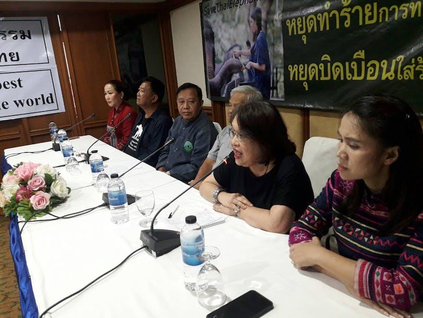 Thailand elephant press conference
