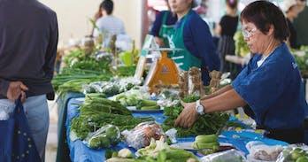 Jing Jai organic farmers market Chiang Mai